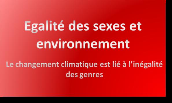 egalite des sexes et environnement